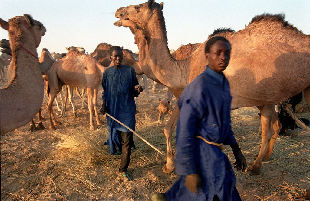 Niger's Tenere desert - 2005